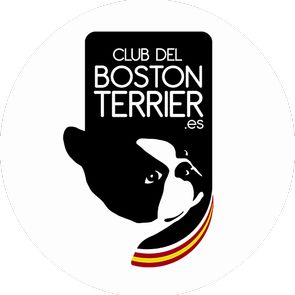 Logo Boston Terrier
